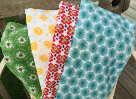 Set of 4 Pioneer Woman Dish Towels